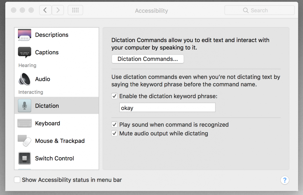 Accessibility Settings, Dictation